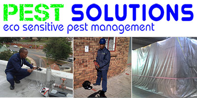 Integrated Pest Solutions Durban